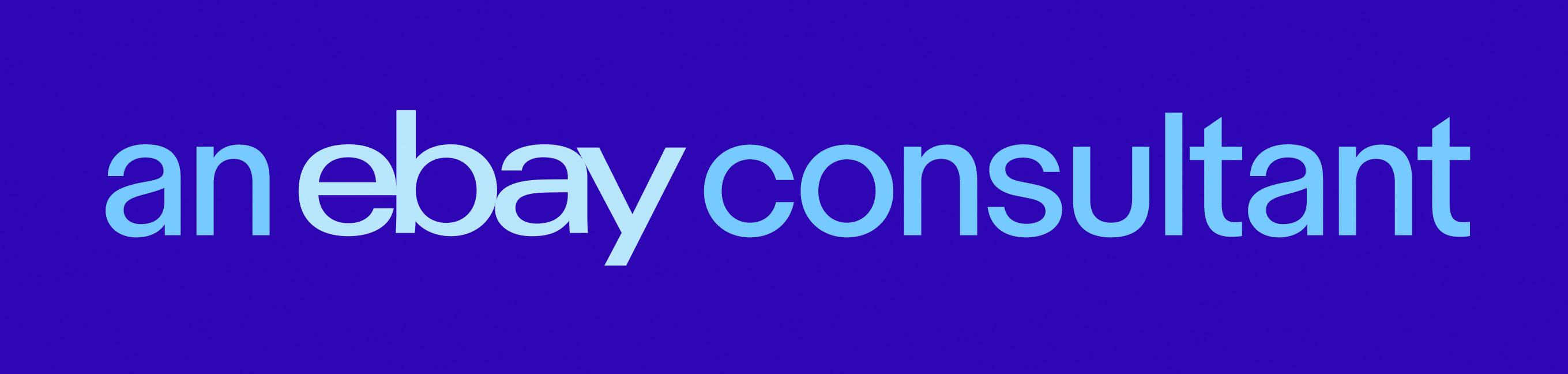 ebayConsultantLogo